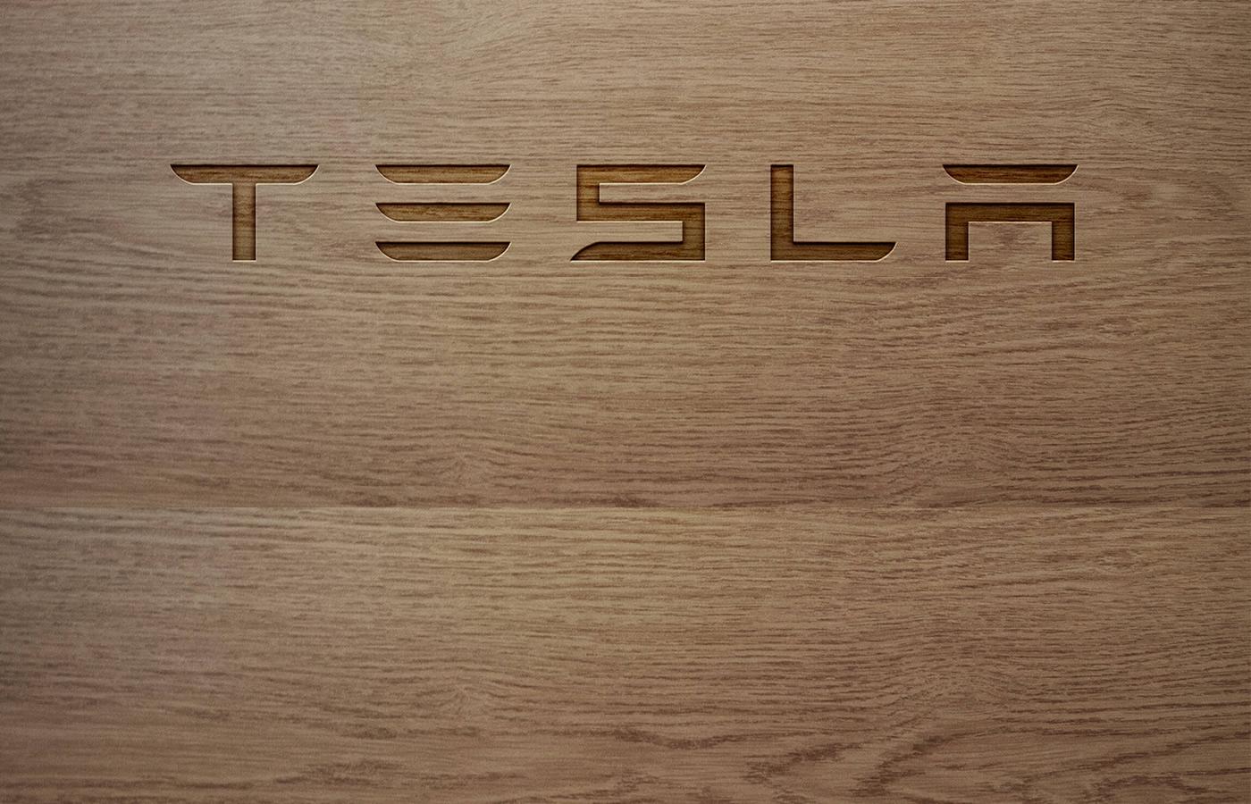 Tesla_Model_S_Fiss_5